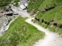 Wege und Steige
